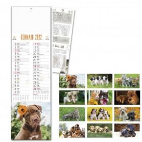 """Calendario Olandese Animali """"Cani e Gatti"""""""